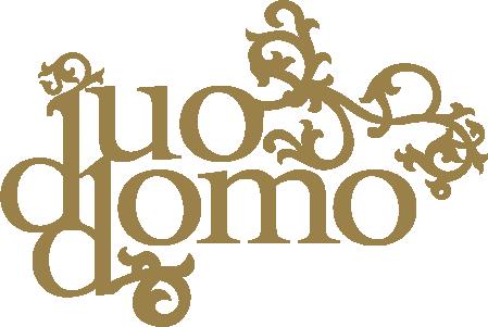 DuoDOMO